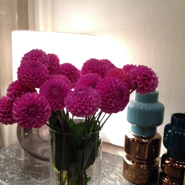 Flowers Sweety Night